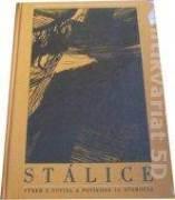 Stálice (Výber noviel a poviedok 19. storočia)