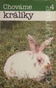 Chováme králiky