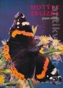 Motýle zblízka