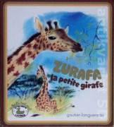 Zurafa, la petite girafe