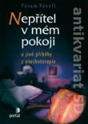 Nepřítel v mém pokoji a jiné příběhy z psychoterapie