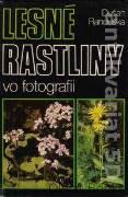 Lesné rastliny vo fotografii